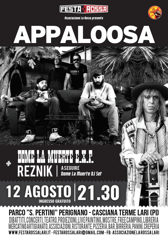 12-08-Appaloosa